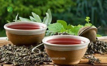 3 bài thuốc Đông y chữa polyp túi mật cho người máu nhiễm mỡ!